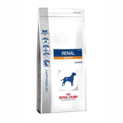 VD DOG RENAL SELECT 2K per  ROYAL CANIN
